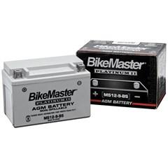 AGM Platinum II Battery