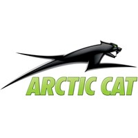 Aircat 3D Decal Green