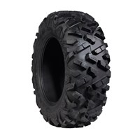 Front Bighorn 2.0 Tire by Maxxis