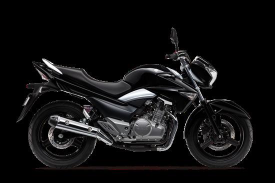 2017 Suzuki GW250