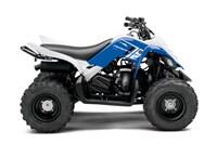 2013 Yamaha RAPTOR 90