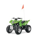 2014 Arctic Cat DVX 90