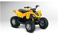 2014 Can-Am DS 70