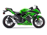 2014 Kawasaki NINJA® 300 ABS SE
