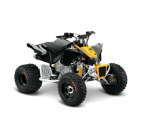2015 Can-Am DS X 90