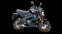 2018 Kawasaki Z125 PRO SE